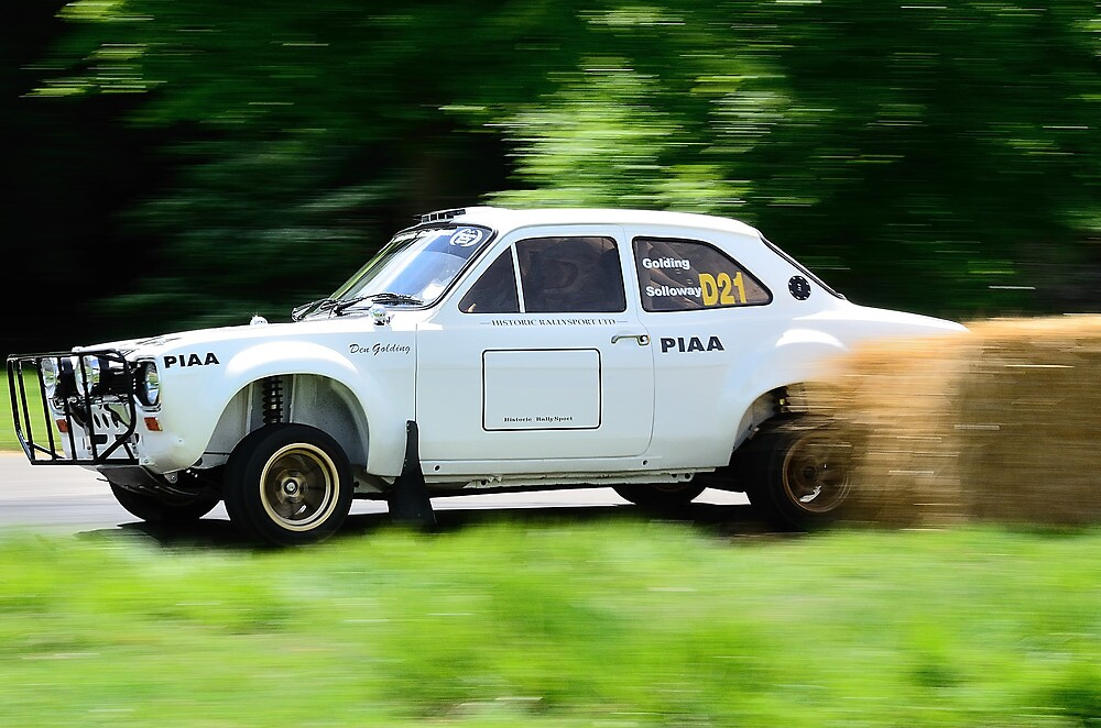 Ford Escort MK1 Safari Rally Car\