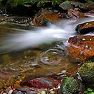 Rancina Stream   III. by jimmylu