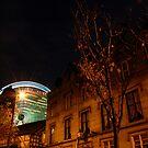 Alien Invasion by rosiephoto