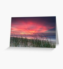 Pink Sunrise - Yaroomba Beach, Qld Greeting Card