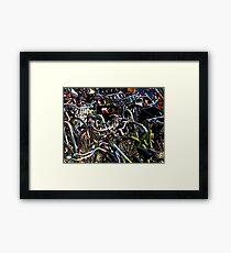 amsterdam bicycles Framed Print
