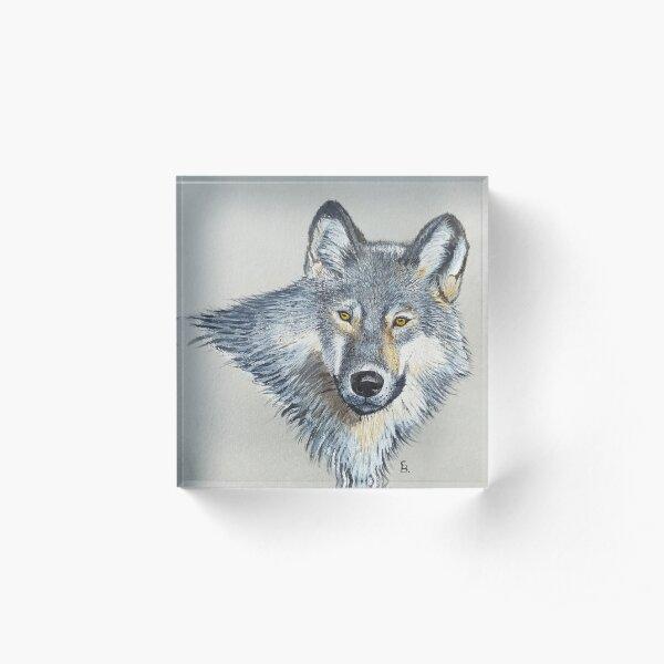 Wolf portrait Acrylic Block