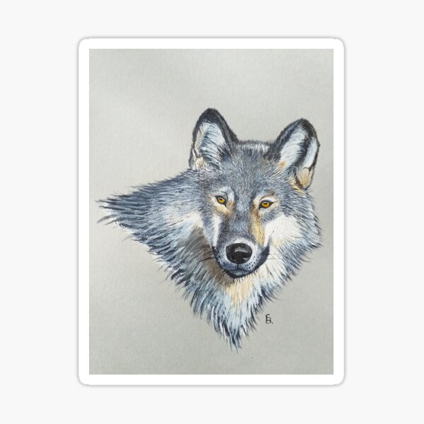 Wolf portrait Sticker
