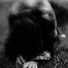Crawl by Nikki Smith