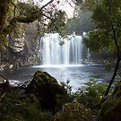 Pencil Pine Falls  by Patrick Reid