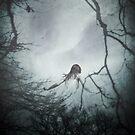 Creep by Nikki Smith (Brown)