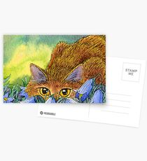 Cat stalking through the harebells Postcards