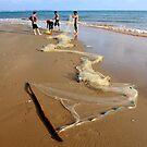 Fishermen emptying their net on the beach. Mui Ne, Vietnam by Sheldon Levis