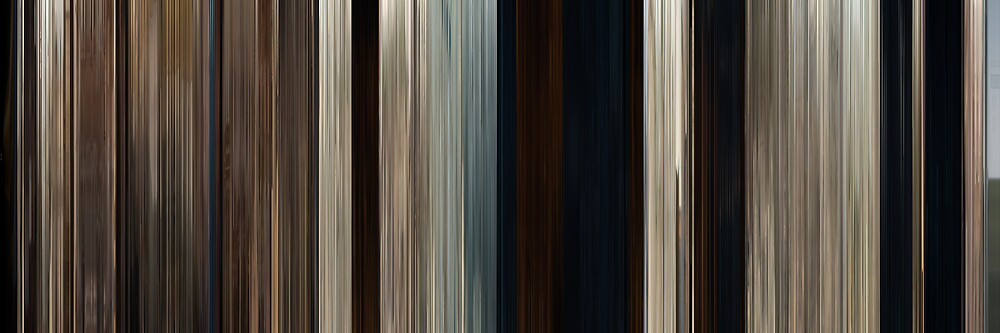 Moviebarcode: True Grit (2010) by moviebarcode