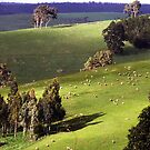 Green Pastures by Eve Parry