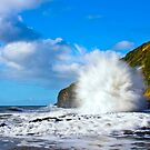 Blow Hole in Paradise by Patrick Reid