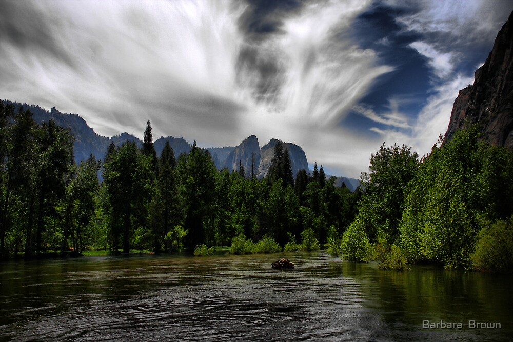 Through the Valley by Barbara  Brown