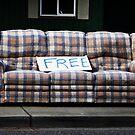 FREE by Chloe Lindgren