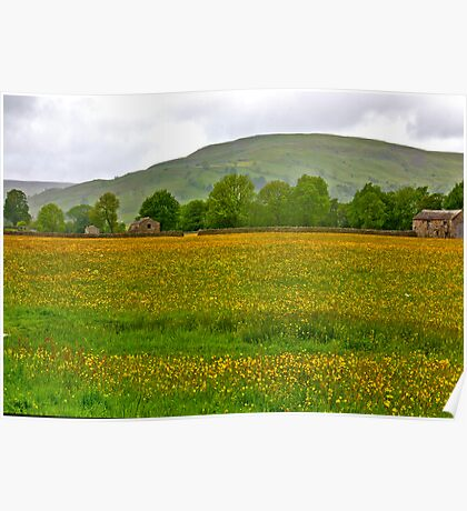 Buttercup Meadow Poster