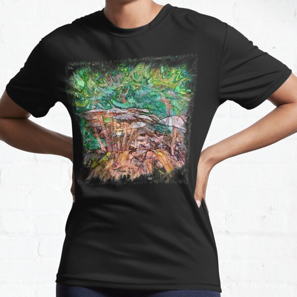 The Atlas Of Dreams - Color Plate 169 Active T-Shirt