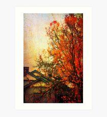 Autumn in Bendigo Art Print