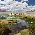Tara Salt Flat coloured landscape by DianaC