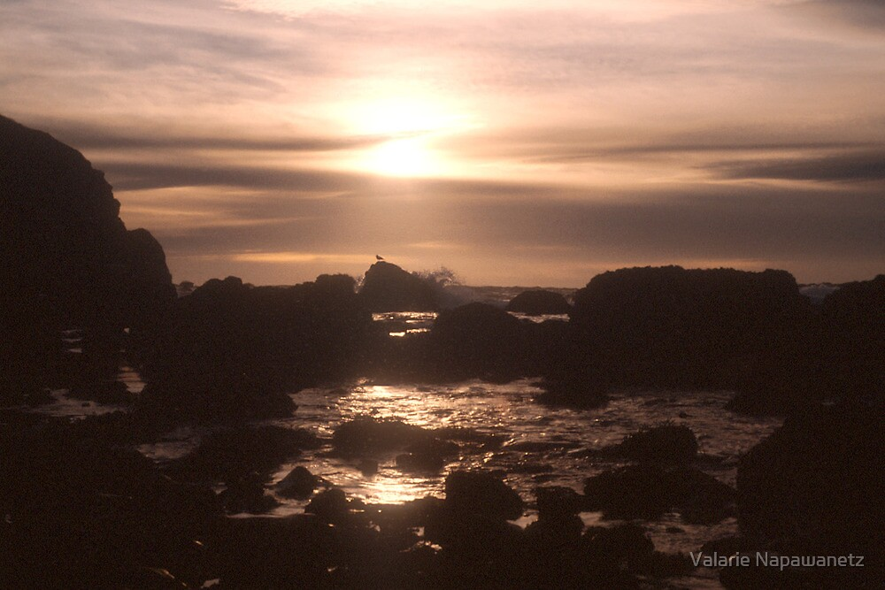 Waiting for the Tide by Valarie Napawanetz