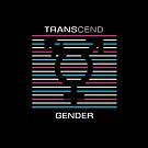Transcend Gender by artemiscreates