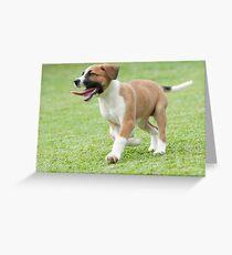 Bella on the run! Greeting Card