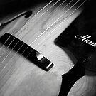 Vintage Harmony Guitar 398 by AnalogSoulPhoto
