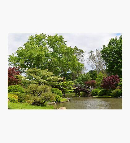 Japanese Inspired Garden Photographic Print