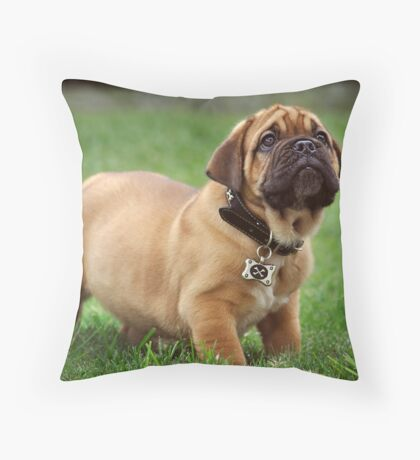Pure Puppy Innocence Throw Pillow