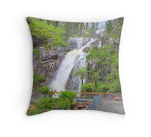 Steavensens Falls, Marysville Throw Pillow