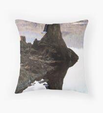 Twinning Glass Throw Pillow