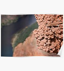 Hanging Out Over Horseshoe Bend Poster