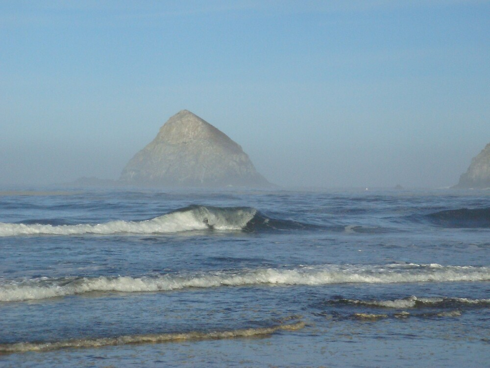 Oregon Coast by Travis  laparne