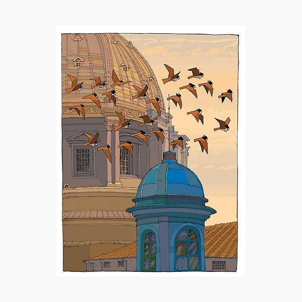 Harpy Sunset Photographic Print
