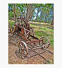 Laid to Rust Photographic Print
