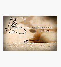 Fly On Wings of Dragonflies, Little Ones Photographic Print