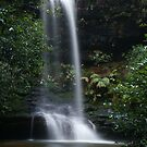 frederica falls by peter  jackson