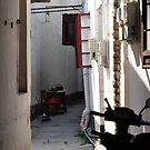 Shanghai Alley by Bryan Cossart
