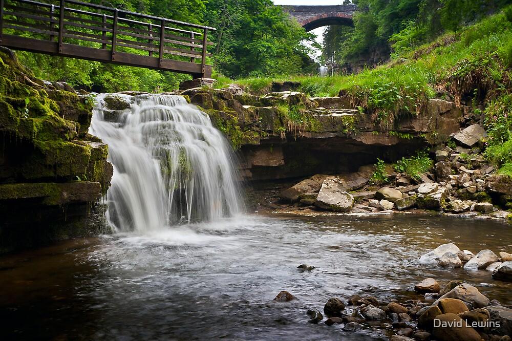 Ashgill Waterfalls, Alston, Northern Pennines. UK by David Lewins