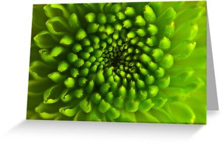 Green Vortex  by Leon Ritchie
