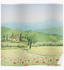 Tuscan Vineyard, Tuscany, Italy Poster