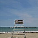 No Lifeguard on Duty! by Lee d'Entremont