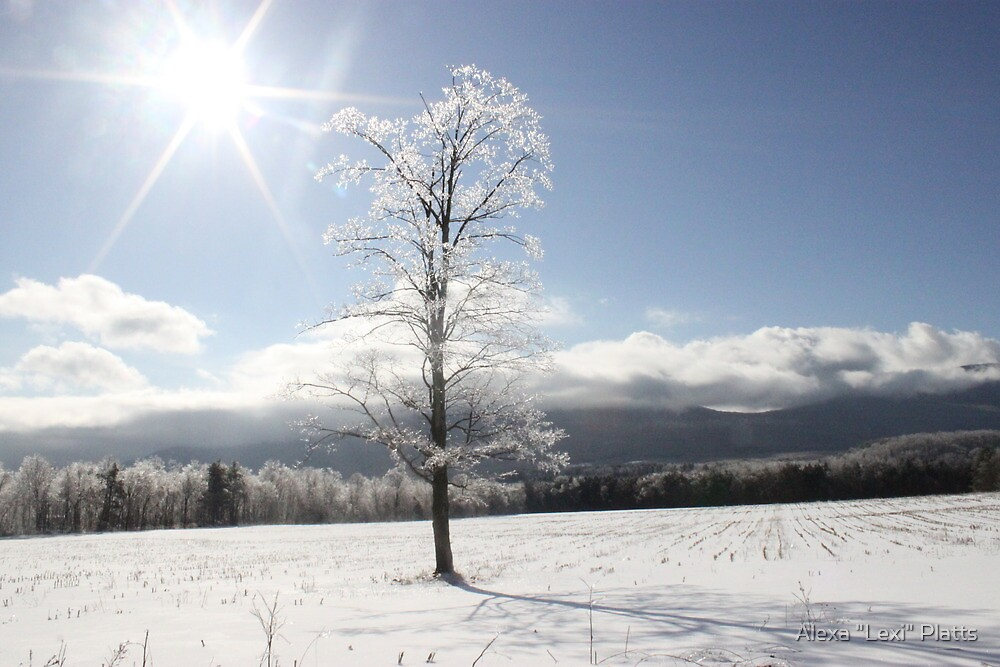 "Its a beautiful day. by Alexa ""Lexi"" Platts"