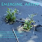 Emerging Artist by Initially NO