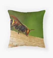 big to small Throw Pillow