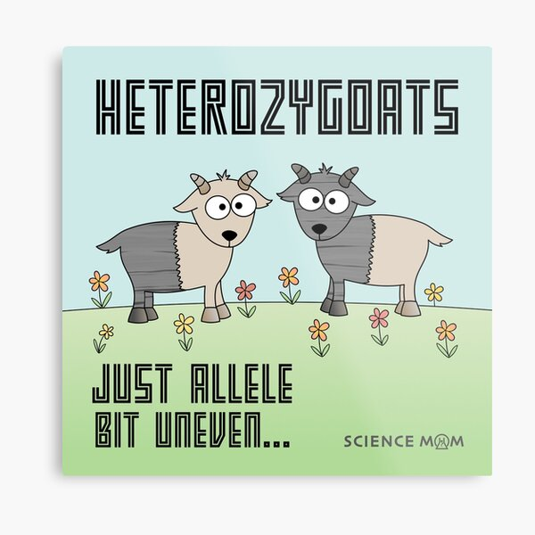 Heterozygoats  Metal Print