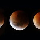 Lunar eclipse time lapse by Robyn Lakeman
