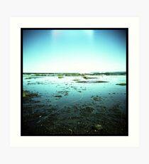 Coast #02 Art Print