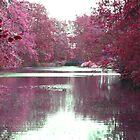 Autumnal Lake by Alex  Motley