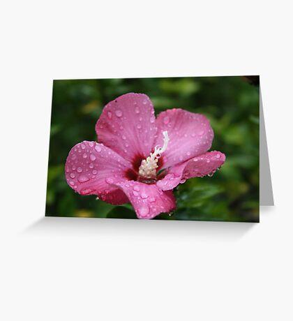 GEMS ON  PETALS Greeting Card