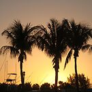 Sunrise Through The Palms by kfurniz
