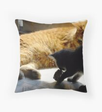 Frank and Farley...Friends, Almost... Throw Pillow